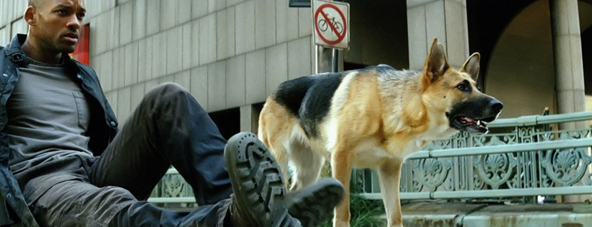 samantha i am legend sad death 2
